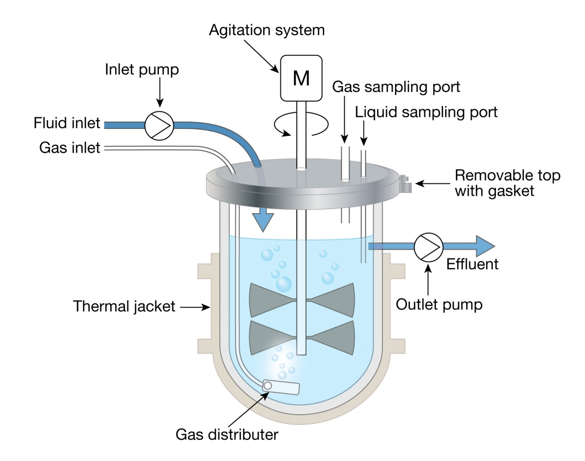 Bioreactor Diagram Sonja Caldwell What Is Annotated